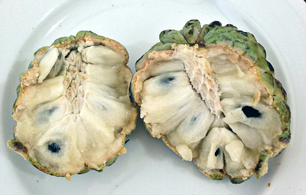 Custard apple o chirimoya