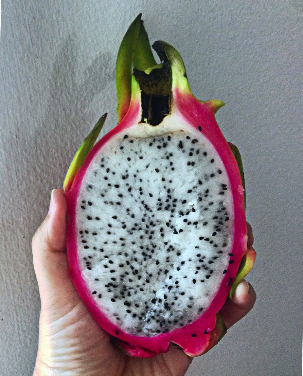 Pitajaya o dragon fruit