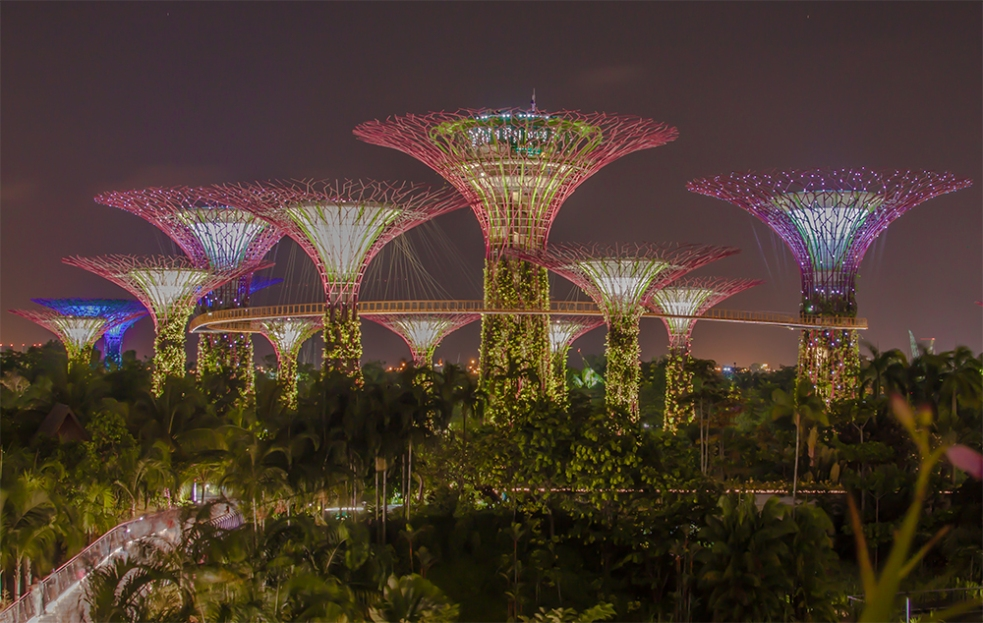 Gardens by the Bay de noche