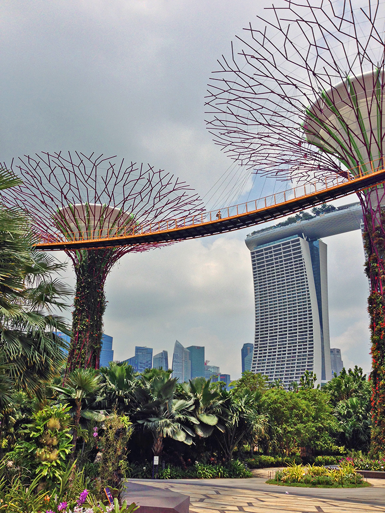 marina_bay_sands_gardens_by_the_bay